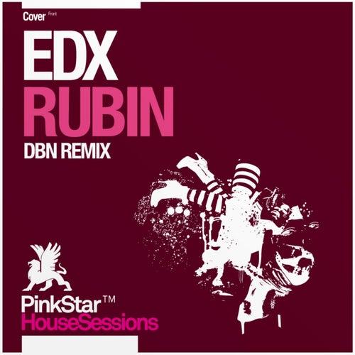 Rubin by EDX