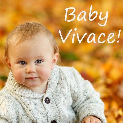 Baby Vivace de Music Box