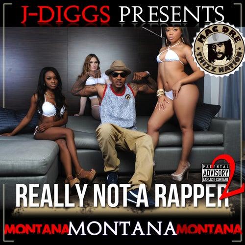 Really Not a Rapper 2 von Various Artists
