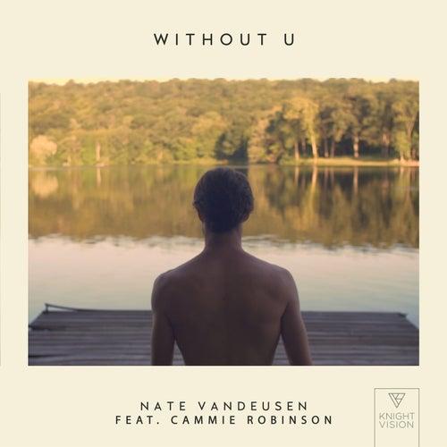 Without U (feat. Cammie Robinson) de Nate VanDeusen