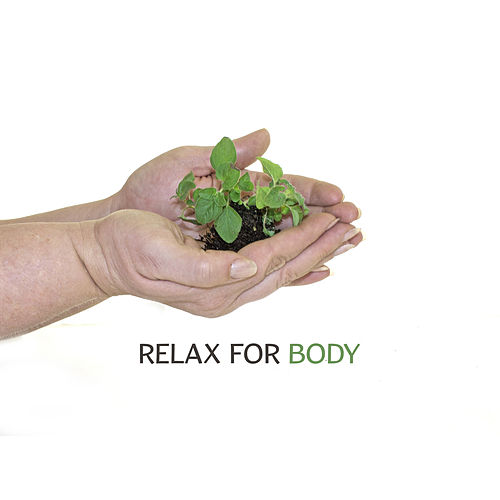 Relax for Body – Therapy Sounds, Zen Spa, New Age Music Reduces Stress, Peaceful Mind, Wellness Music de Massage Tribe
