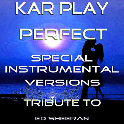 Perfect (Special Instrumental Versions Tribute To Ed    by