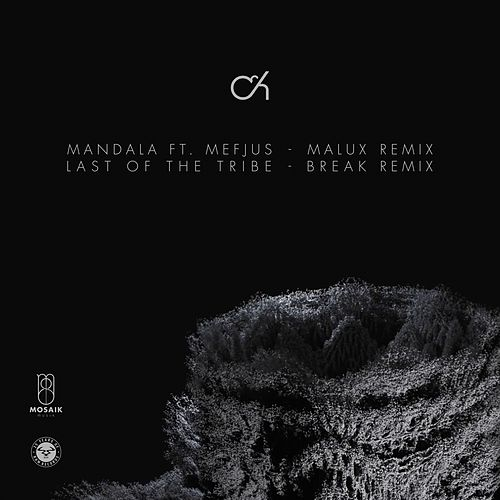 Mandala (Malux Remix) / Last of the Tribe (Break Remix) von Camo And Krooked