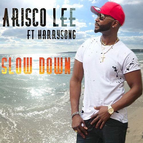 Slow Down (feat. Harrysong) by Arisco Lee