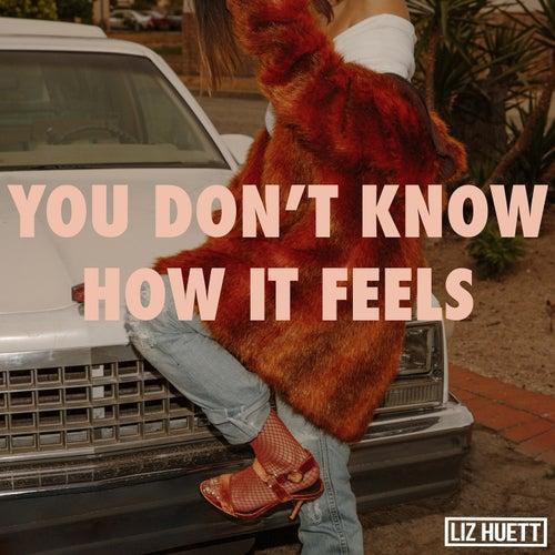 You Don't Know How It Feels de Liz Huett