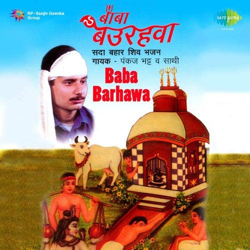 Baba Barhawa van Pankaj Bhatt