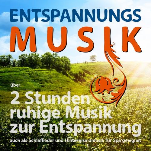 Entspannungsmusik über 2 Stunden, ruhige Musik zur Entspannung auch als Schlaflieder und Hintergrundmusik für Spa geeignet von Various Artists