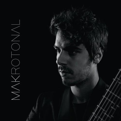 Makrotonal Guitar by Mak Grgić