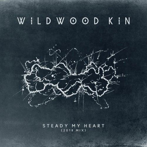Steady My Heart (2018 Mix) von Wildwood Kin