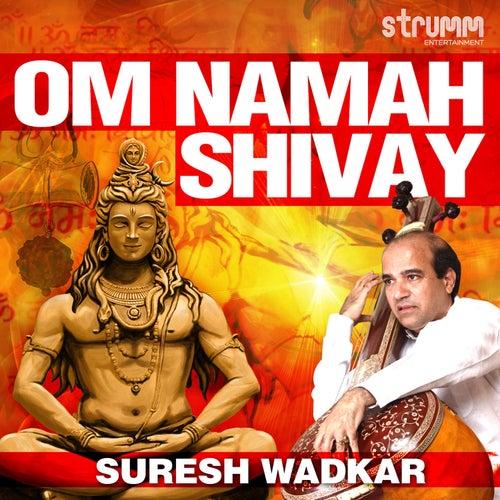 Om Namah Shivay by Suresh Wadkar