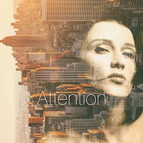 Attention by Mona K
