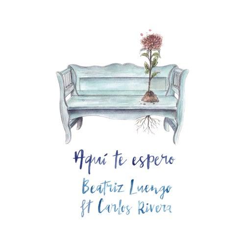 Aquí Te Espero by Beatriz Luengo