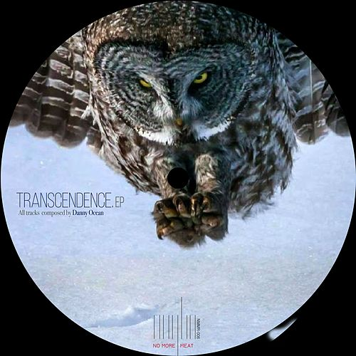 Transcendence by Danny Ocean