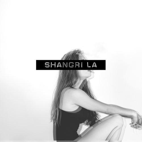 Trouble Maker de Shangrila