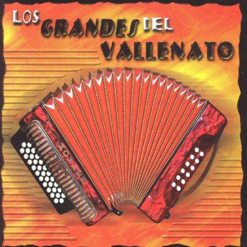 Los Grandes Del Vallenato by Los Hijos Del Rey
