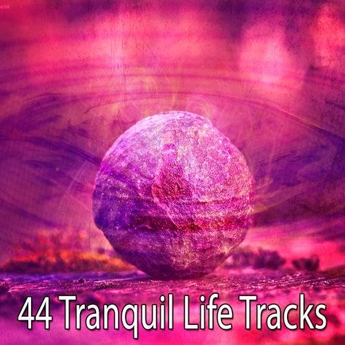 44 Tranquil Life Tracks von Massage Therapy Music