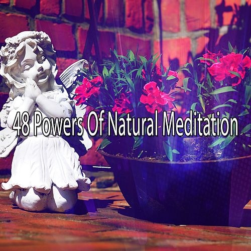48 Powers Of Natural Meditation de Massage Tribe