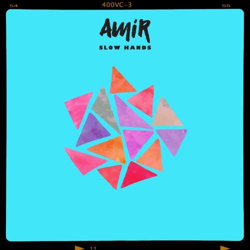 Slow Hands de Amir