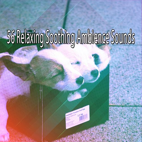 56 Relaxing Soothing Ambience Sounds von Rockabye Lullaby