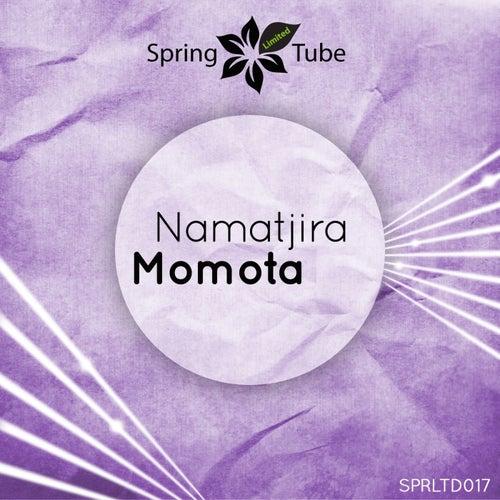 Momota by Namatjira