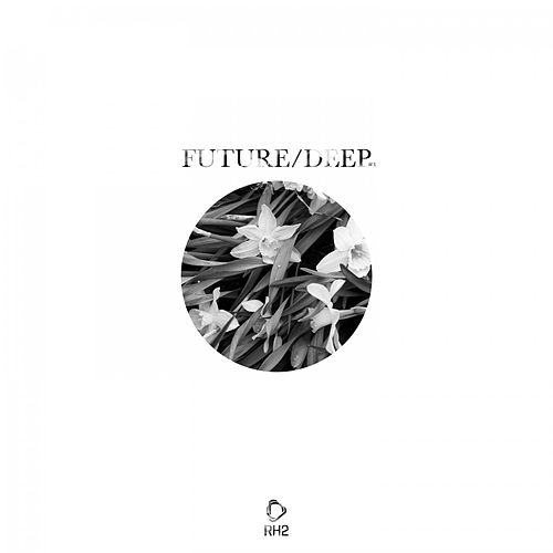 Future/Deep #3 von Various Artists