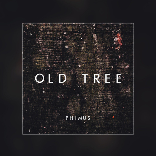 Old Tree by Phimus