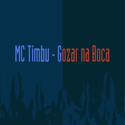 Gozar na Boca by MC Timbu
