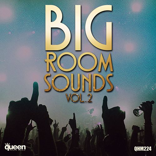 Big Room Sounds, Vol.2 von Various Artists