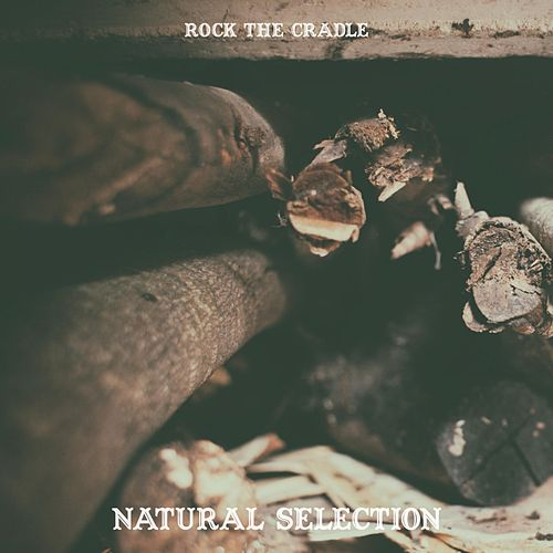 Natural Selection by Rock the Cradle