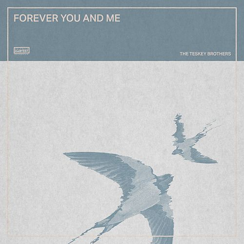 Forever You and Me de The Teskey Brothers