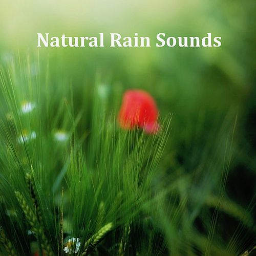 10 Relaxing Nature Spa Sounds, Rain & Nature Music by Relaxing Spa Music