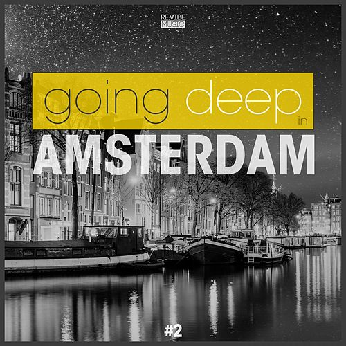 Going Deep in Amsterdam, Vol. 2 de Various Artists