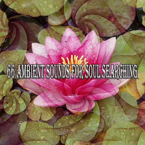 66 Ambient Sounds For Soul Searching de Meditación Música Ambiente