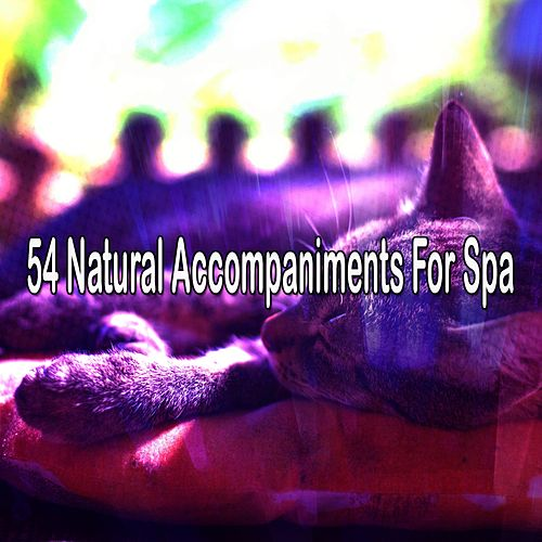 54 Natural Accompaniments For Spa von Best Relaxing SPA Music