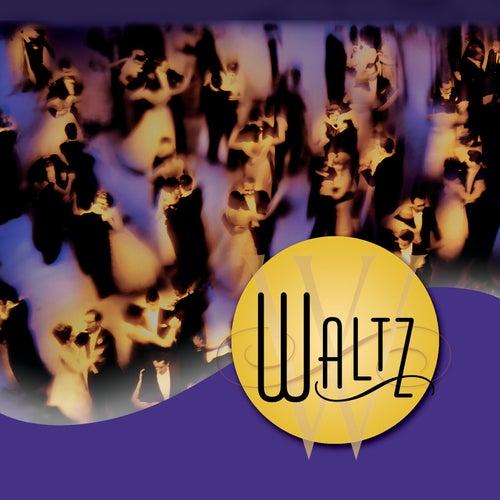 Waltz by Jeff Steinberg