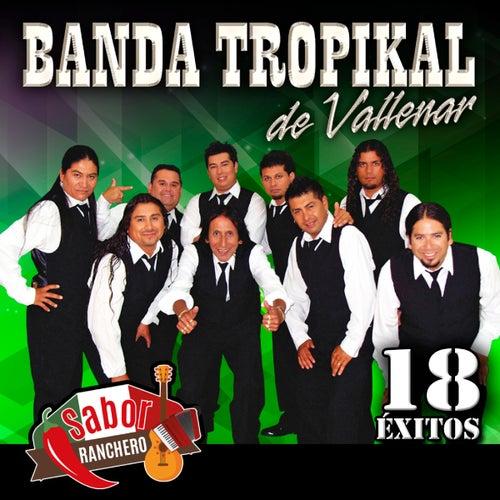18 Exitos van La Banda Tropikal de Vallenar
