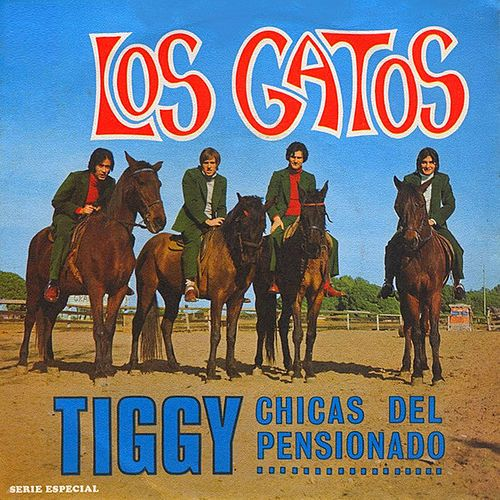 Tiggy de Los Gatos