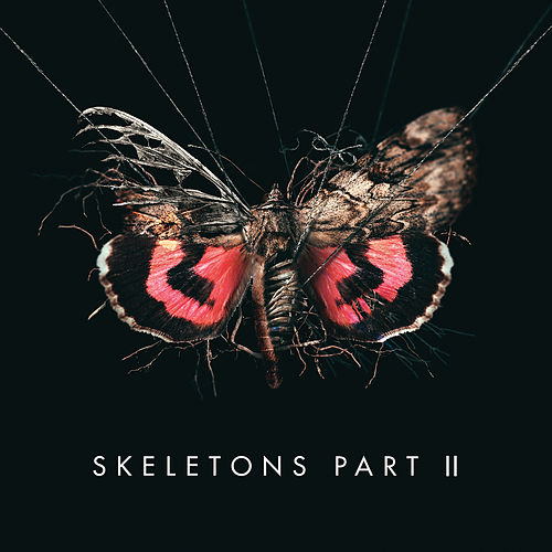 Skeletons: Part 2 by Missio