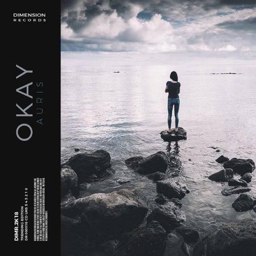 Okay by Auris