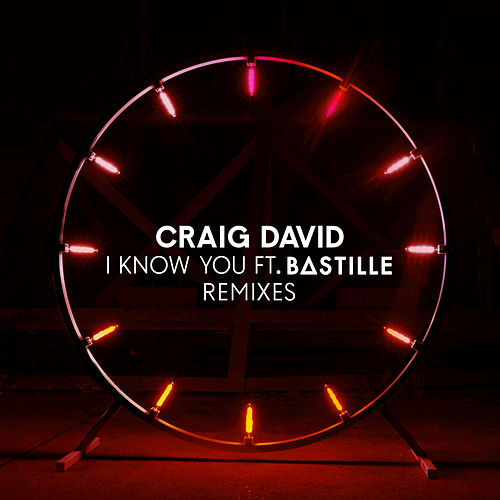 I Know You (Remixes) by Craig David