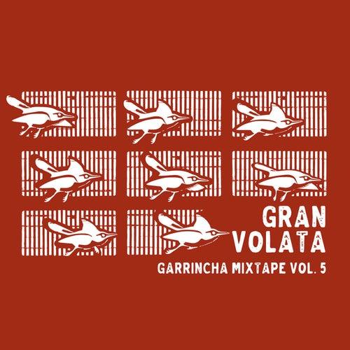 Garrincha Mixtape Vol. 5 - Gran Volata von Various Artists