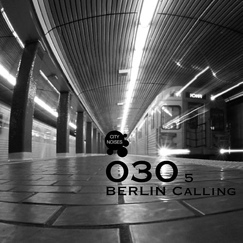 030 Berlin Calling, Vol. 5 de Various Artists