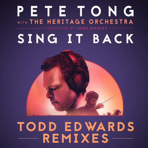 Sing It Back (Todd Edwards Remixes) by Jules Buckley