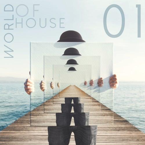 World of House, Vol. 1 de Various Artists