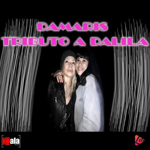 Tributo a Dalila de DÁMARIS y su Banda