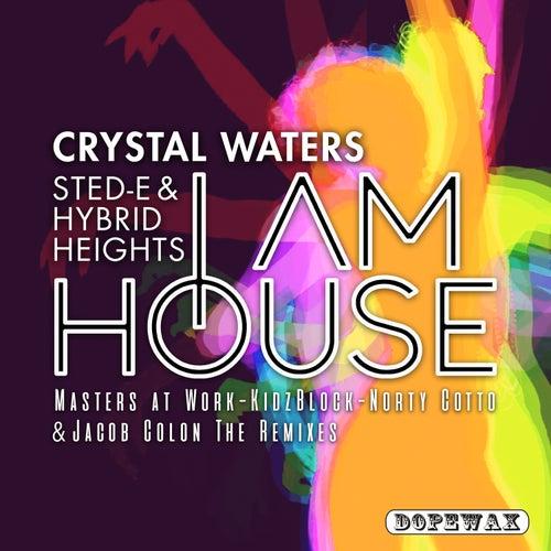 I Am House (The Remixes) de Sted-E