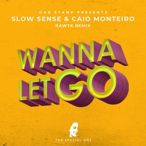 Wanna Let Go (Rawtk Remix) by Caio Monteiro