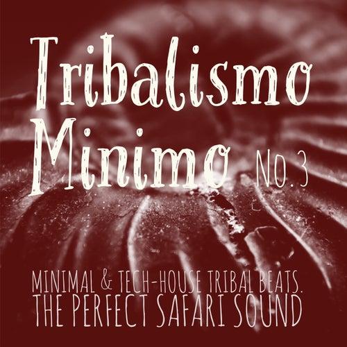 Tribalismo Minimo, Vol. 3 (Mixed by DJ Franco Capuano) de Various Artists