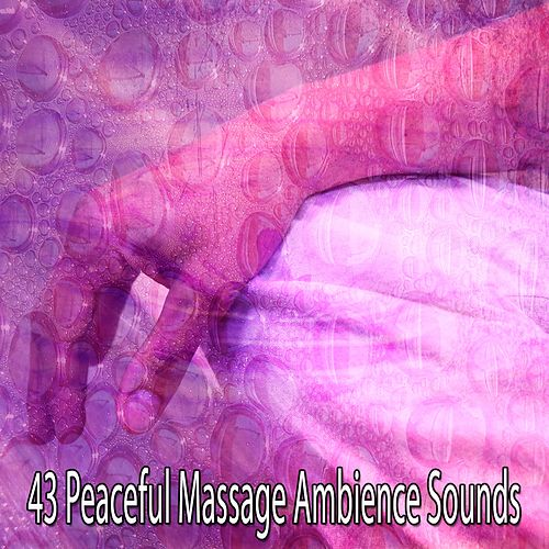 43 Peaceful Massage Ambience Sounds by Massage Therapy Music