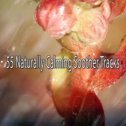 55 Naturally Calming Soother Tracks by Relaxing Spa Music